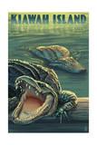 Kiawah Island  South Carolina - Alligator Scene