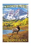 Crested Butte  Colorado - Maroon Bells and Elk