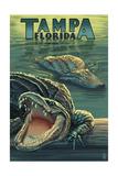 Tampa  Florida - Alligators