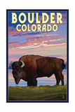 Boulder  Colorado - Bison and Sunset
