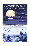Kiawah Island  South Carolina - Sea Turtles Hatching
