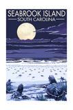 Seabrook Island  South Carolina - Sea Turtles Hatching