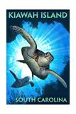 Kiawah Island - South Carolina - Sea Turtle Diving