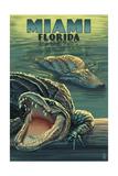 Miami  Florida - Alligators