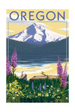 Oregon - Mountain and Lake