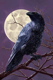 Raven and Moon Purple Sky