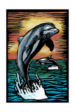 Dolphins - Scratchboard