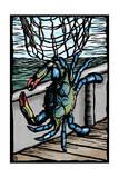 Blue Crab - Scratchboard