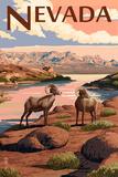 Nevada - Bighorn Sheep