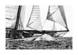 Free Sailing