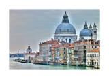 Venice Lately