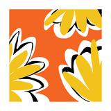 Oh So Pretty - Orange 2