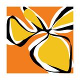 Oh So Pretty - Orange