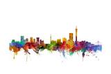 Johannesburg South Africa Skyline