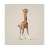 Girafe Giclée par John Butler Art