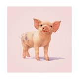 Petit cochon Giclée par John Butler Art