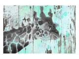 Giraffe Taking A Look