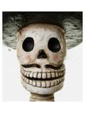 Sugar Skull Mariachi