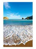 New Zealand Coast Wellington