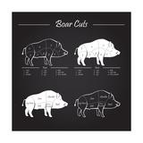 Boar Meat Cut Diagram - Elements Blackboard
