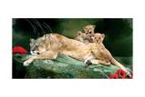 If You Were A Lion Cub