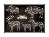 Vector Diagram Cut Carcasses Boar  Bison  Deer  Horse
