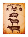 Vector Diagram Cut Carcasses Chicken, Pig, Cow, Lamb Reproduction d'art par 111chemodan111
