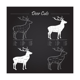 Deer Meat Cut Scheme