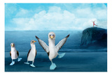 If You Were A Blue Footed Booby
