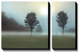 Two Trees & Sunburst