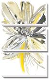 A Sunny Bloom Tableau multi toiles par Rebecca Meyers