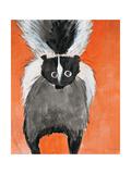 Playful Skunk
