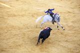 Bullfight, Jerez De La Frontera, Cadiz Province, Andalusia, Spain Papier Photo par Neil Farrin