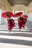Myanmar  Mandalay Division  Bagan Three Novice Monks Running with Red Umbrellas in a Walkway (Mr)