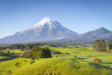Picturesque Mount Taranaki (Egmont) and Rural Landscape  Taranaki  North Island  New Zealand