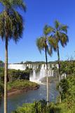 Argentina  Iguazu Falls National Park  (Unesco Site)