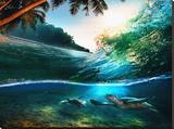 Beach Sea and Ocean