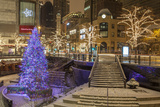 A Christmas Tree on North Michigan Ave in the Magnificent Mile