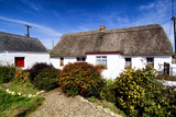 An Irish Thatched Cottage in County Wexford  Ireland