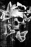 Skull Butterfly Crown Reproduction d'art