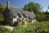 Anne Hathaway's Cottage  Stratford-Upon-Avon  Warwickshire  England  United Kingdom  Europe