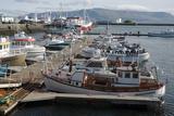 The Old Harbour  Reykjavik  Iceland  Polar Regions