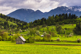 Typical Slovenian Landscape Between Lake Bled and Lake Bohinj