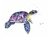 Tortue de mer Reproduction d'art par Suren Nersisyan