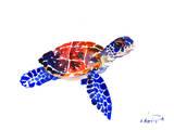 Sea Turtle Babe