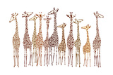 Girafes Reproduction d'art par Milovelen