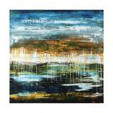 Marshland Paradise Giclée par Joshua Schicker