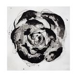Black and White Bloom II