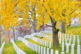 Arlington National Cemetery near to Washington Dc  in Autumn