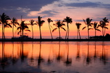 Paradise Beach Sunset or Sunrise with Tropical Palm Trees Summer Travel Holidays Vacation Getaway